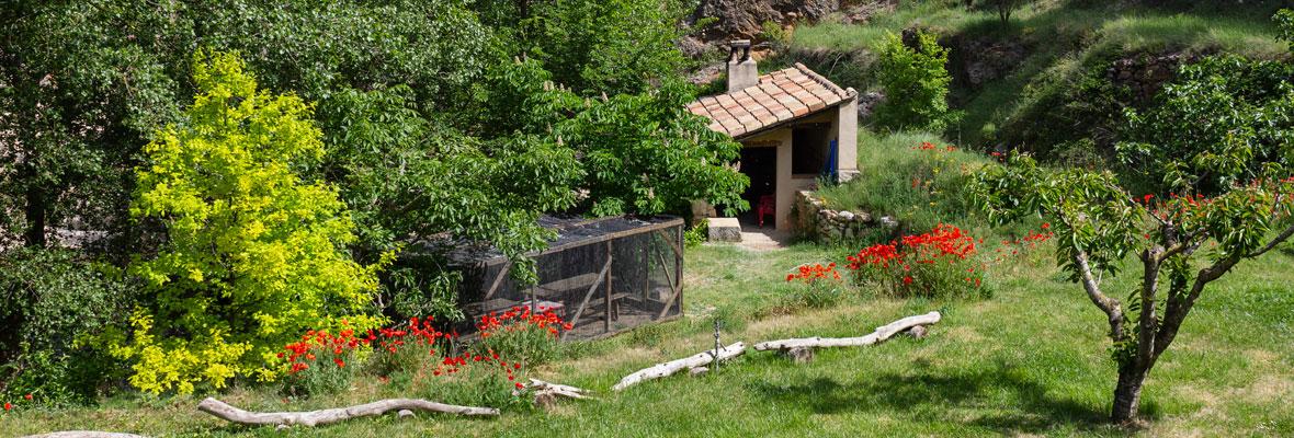 Molí Nou - Apartamentos rurales para grupos - Zona de jardín con barbacoa